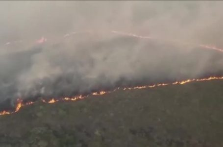Padurea amazoniana continua sa arda. Incendiile se extind