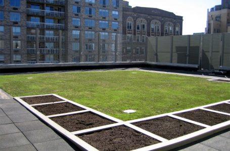 Esti interesat de hidroizolatii pentru terase? Descopera avantajele teraselor verzi